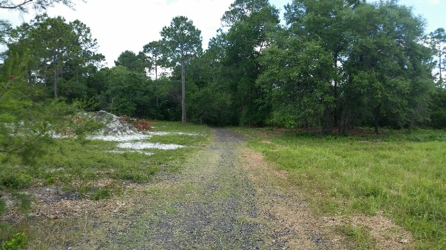 32738 foreclosures – Butler Ridge Rd, Deltona, FL 32738